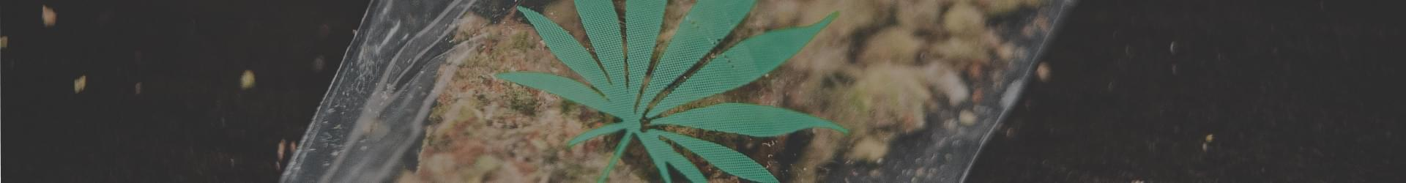 mini marijuana bag